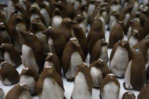 Penguins image 1