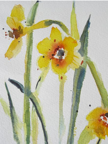 Spring Daffodils in Watercolor