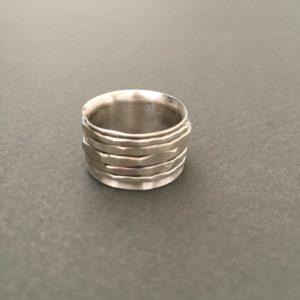 Spinner Ringin Silver_Saran Tector